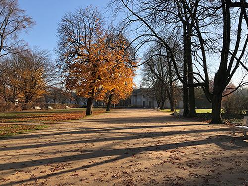 ポーランドのワジェンキ公園